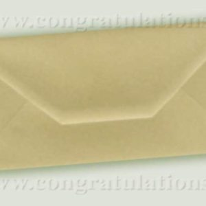 Pearlescent Envelopes
